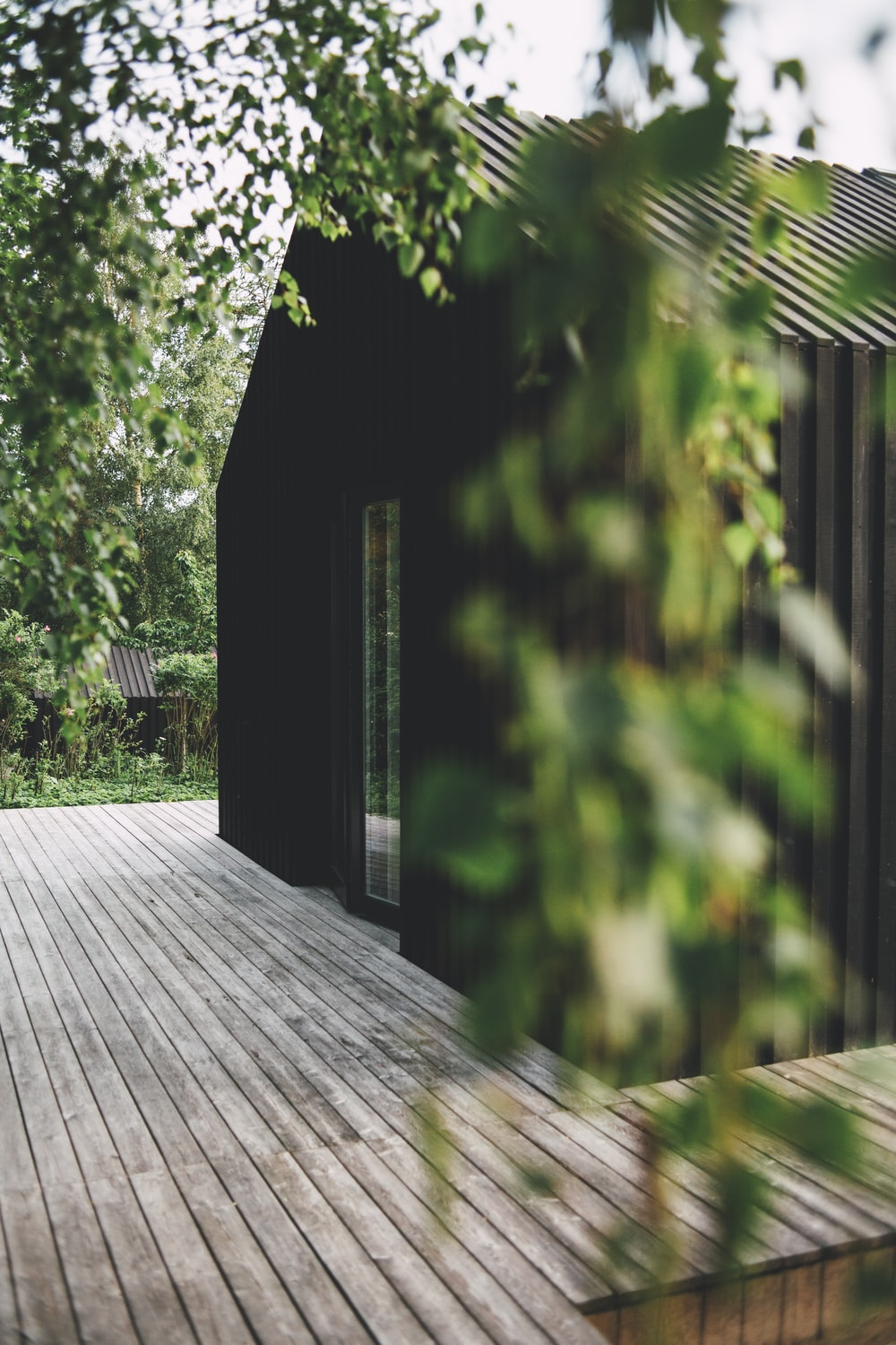 brown shed under trees