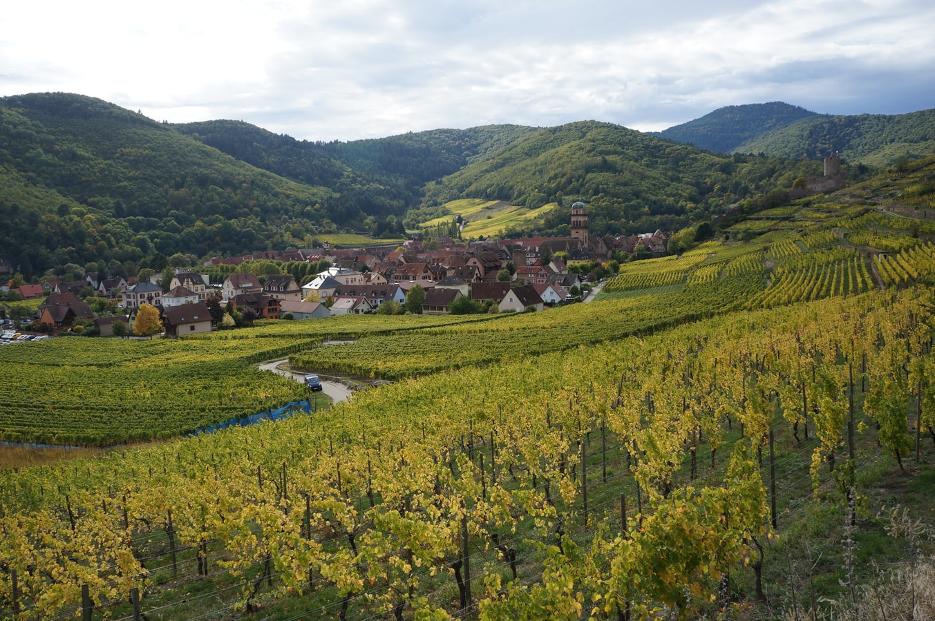 Village - Espace rural - Kaysersberg - France - SchoolMouv - Géographie - CM1