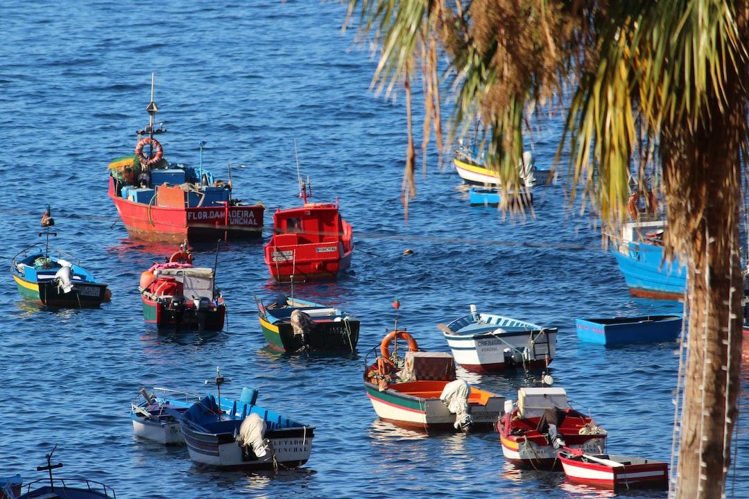 Câmara De Lobos fishing boats