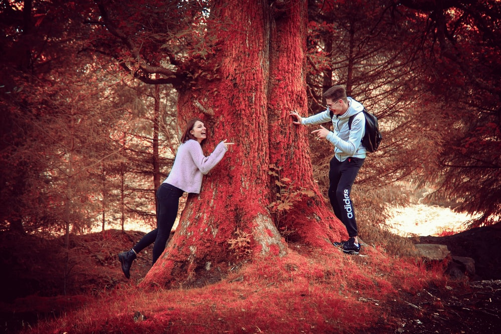 red tree trunk between woman and man