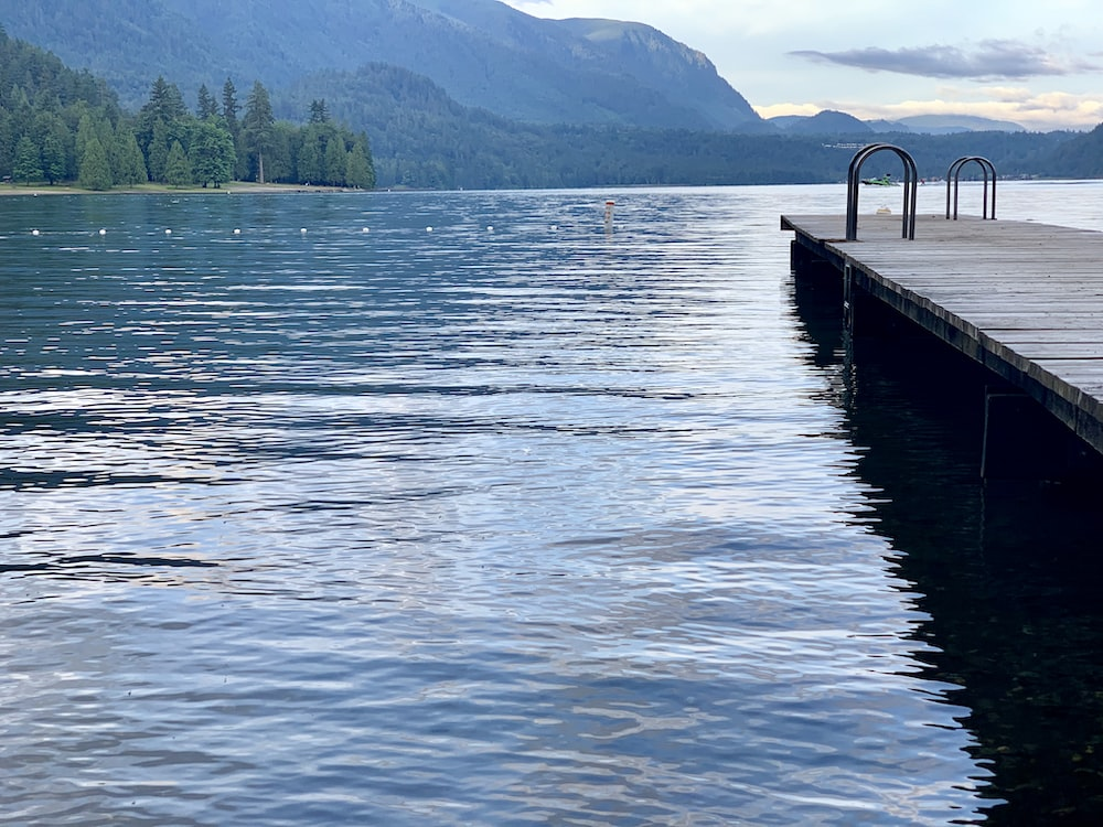 wooden dock over body of water at daytime