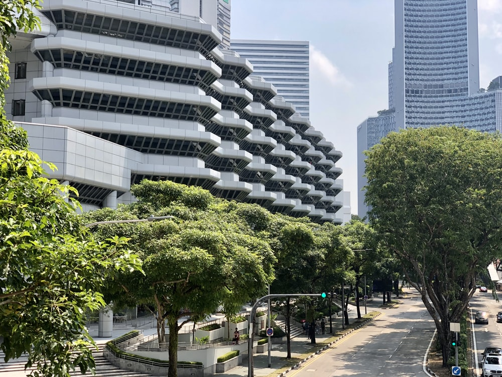 building and tree during daytime