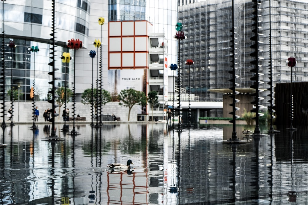 body of water and buildings