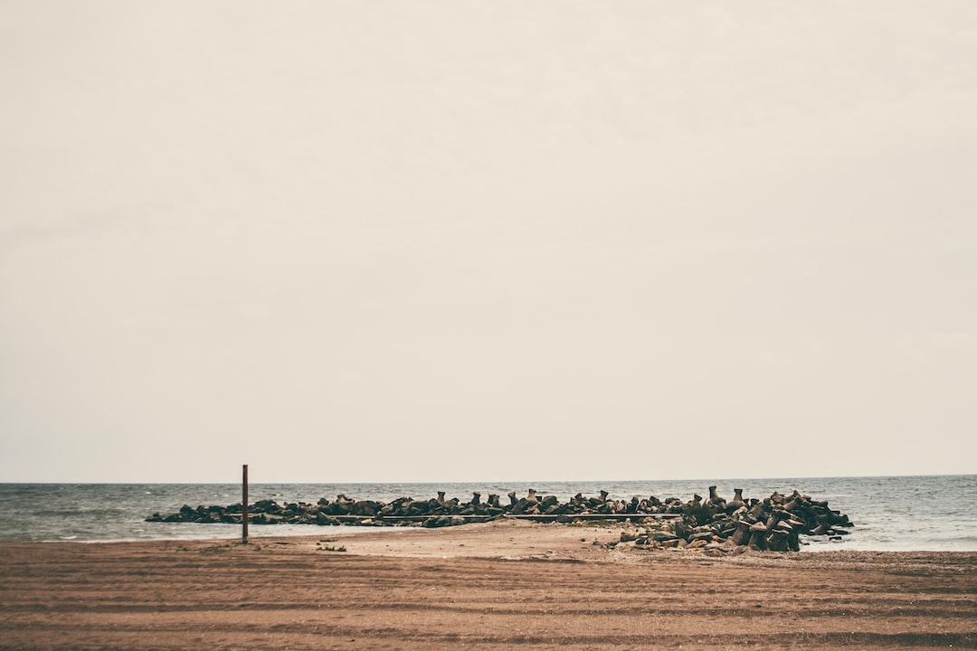 The chillest sea