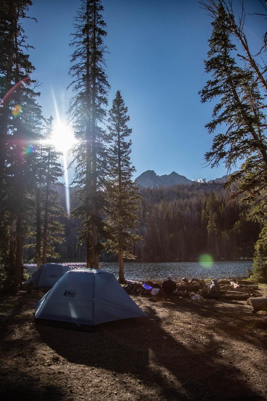 white dome tent