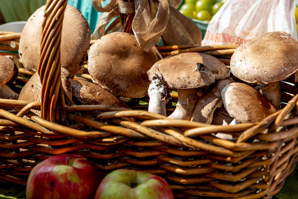 mushrooms in brown basket