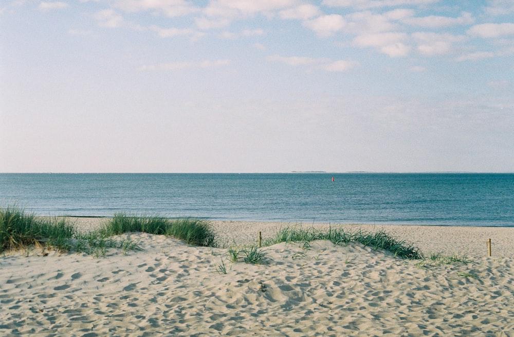 landscape photo of a gray sandy beach