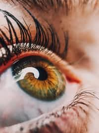 .Eyes that speak.  If I were to tell you about the things my eyes would say   You would walk away and cover your ears.  Everyone's eyes tell a story it just take a really observant person to hear what they say  .Eyes that speak are dangerous. ... will ... poem stories