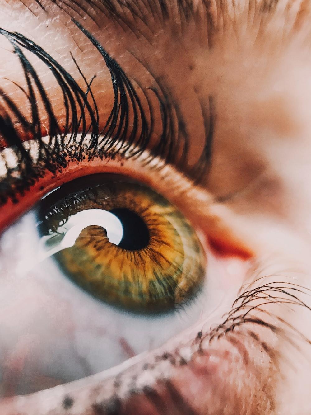 human eye close-up photography