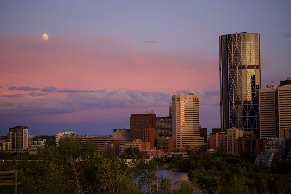 grey high-rise building during golden hour