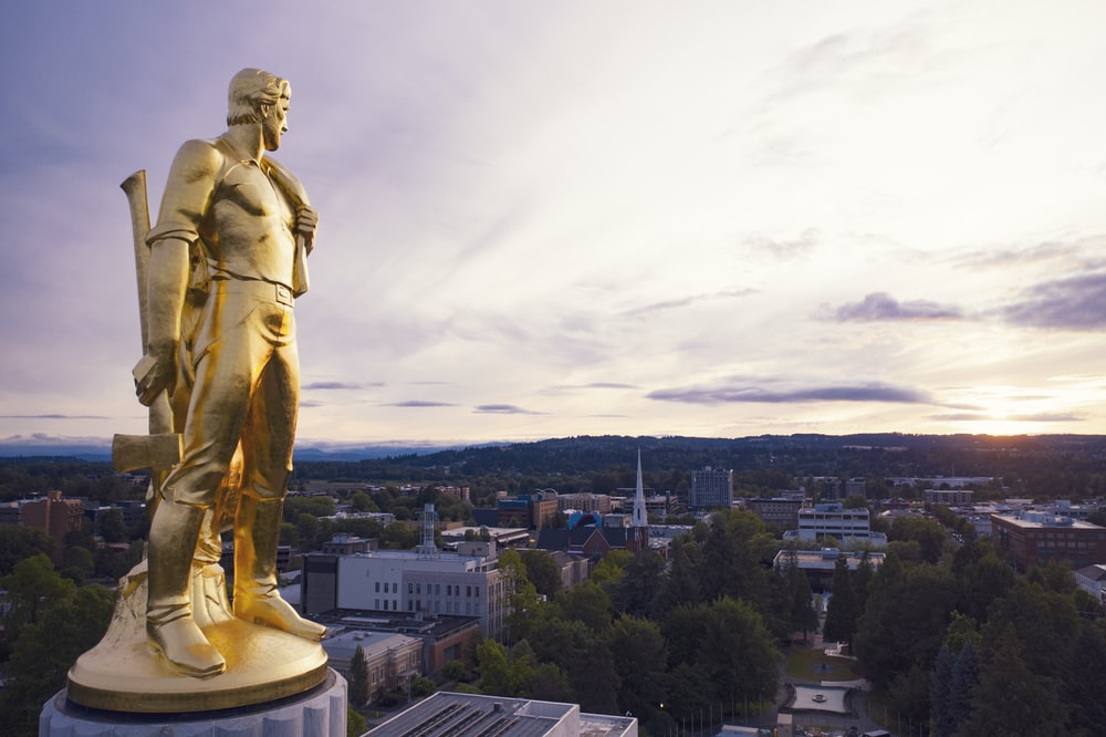 gold-colored statue during daytime