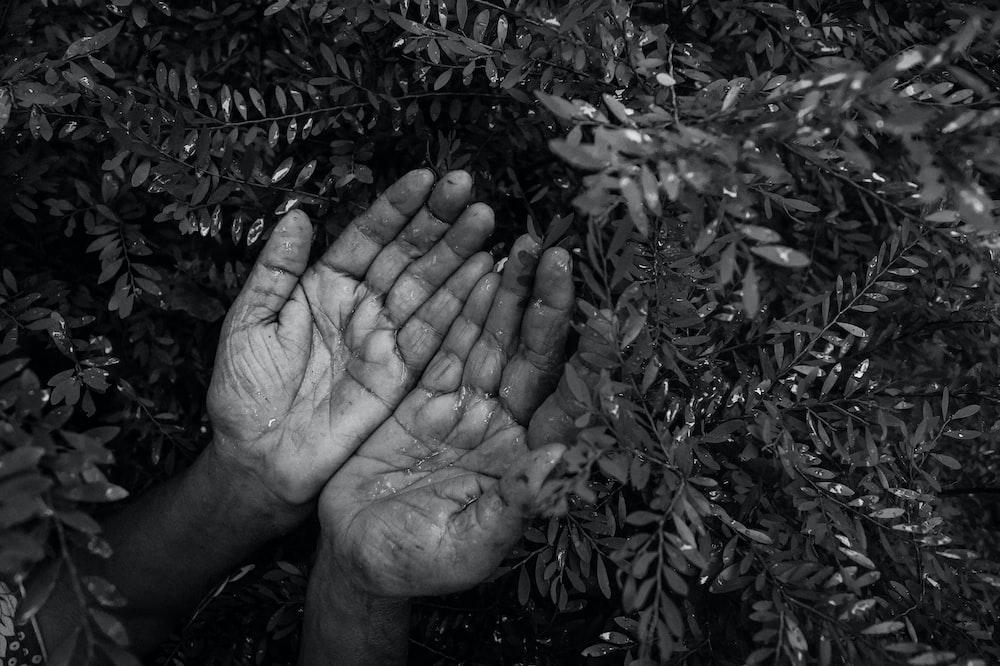 greyscale photo of hand