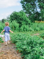Gardening with Your Baby