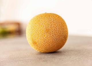 cantaloupe fruit