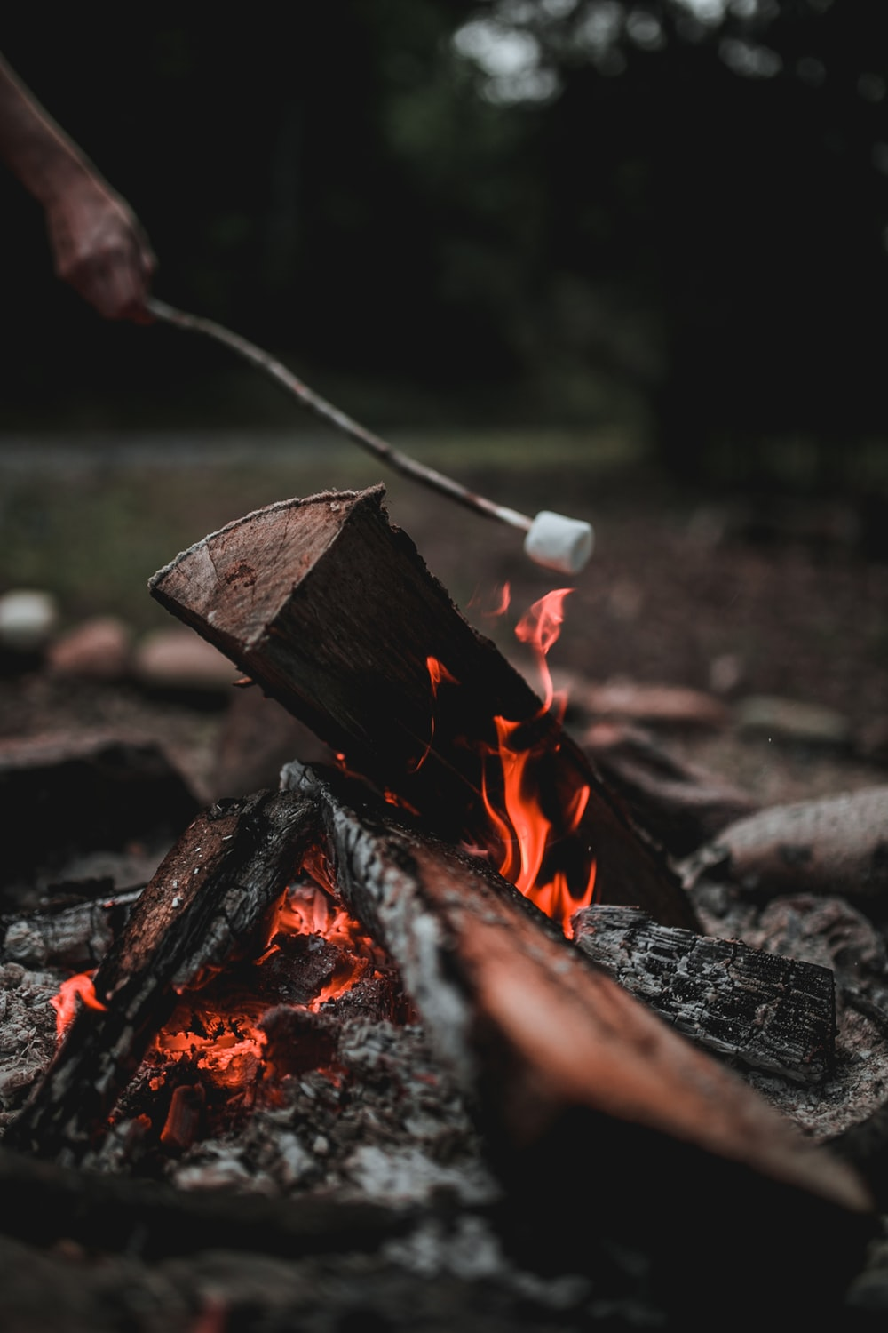 person putting marshmallow on firepit