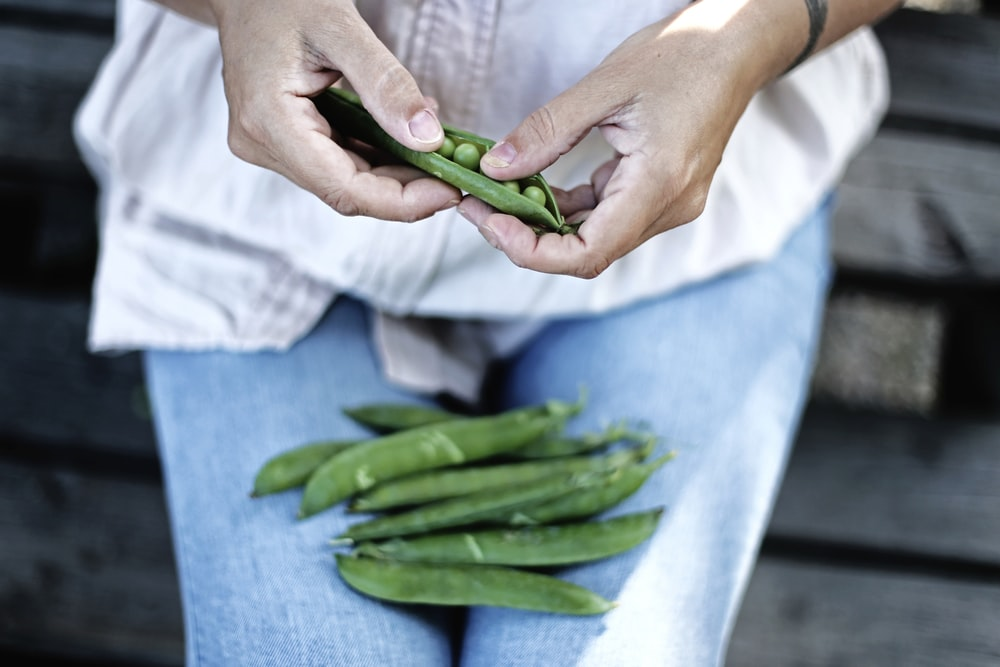 person holding pea pod in selective focus photography