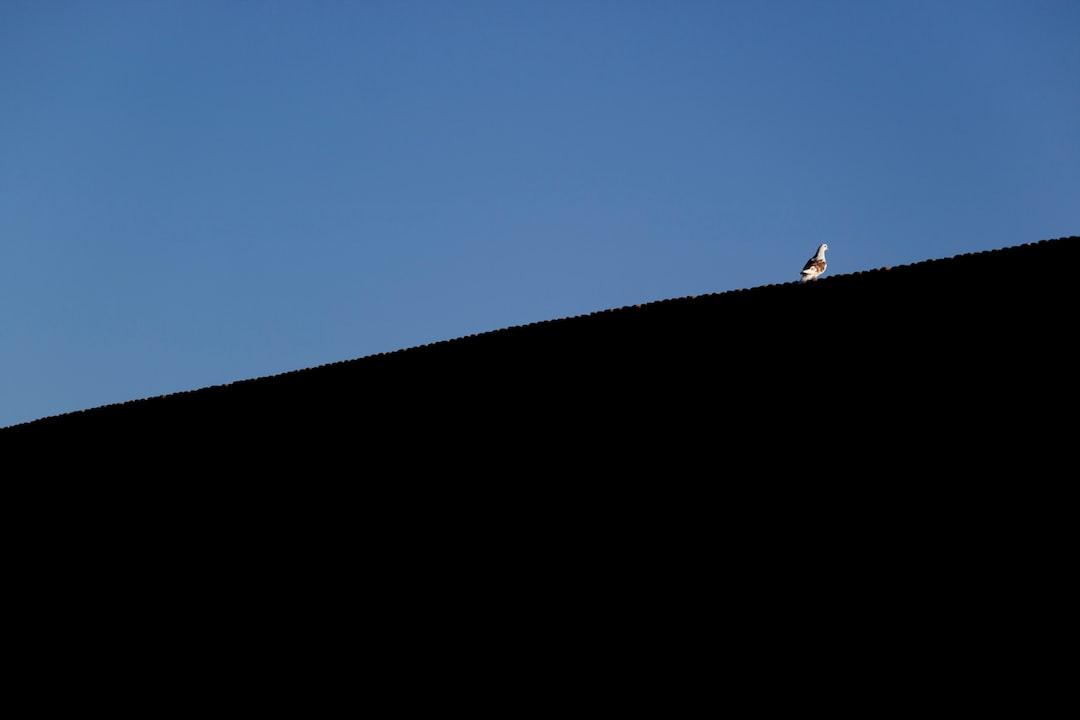 """Deir Gchin驿站是伊朗国家大旅驿站一,位于国家沙漠公园中心地段。这家驿站的独特之处使其拥有""""伊朗伊朗众站之母""""美誉。这家旅馆位于距离库姆东北80公里(Garmsar高速公路60公里),距离瓦拉明市西南方向的35公里。 这座古迹于2003年10月1日被注册国家级遗产(注册号为10408)。2003年被注册为国家遗产后,有关部分紧急展开了修复工作,这项恢复工作一直持续到2006年。 驿站的建筑于萨珊王朝(224-651年)时期有关,并在塞尔柱,萨法为和恺加王朝时期修复过。建筑的目前形式是萨法维时代修复后的面目,拥有古老的波斯风格。"""