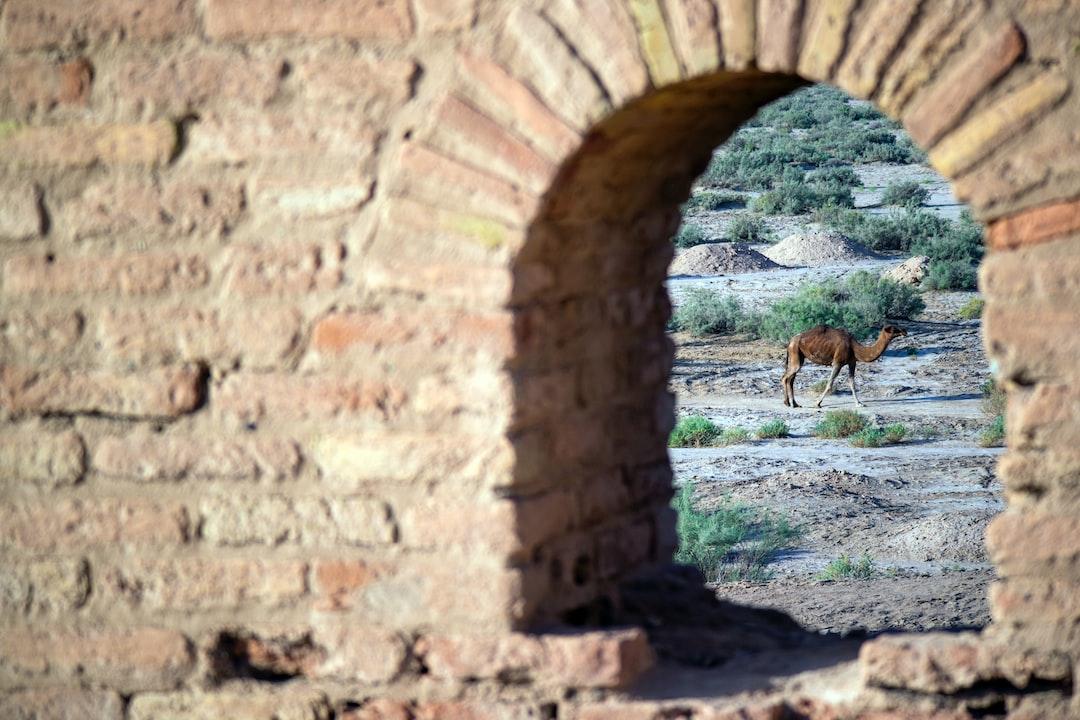 """Deir Gachin nella lingua Pahlavi significa: una Cupola di gesso. Anche se un tale Cupola in presente non viene Costruita. Siccome in epoca di SASANIDE tramite ARTASERSE I fu Costruito, veniva chiamato il """"Duomo di ARTASERSE"""" oppure """"ARTASERSE Ghonbad"""", ghonbad e' un altro Significato della Cupola.Posizione e L'importanza Deir Gachin e' uno dei piu' grandi caravanserragli dell' IRAN Si trova al centro del parco nazionale Deserto.Durante il seleucide, portico e sasanian e' aggiunto anche La Sua importanza Commerciale."""