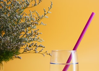 water in drinking glass with pink straw