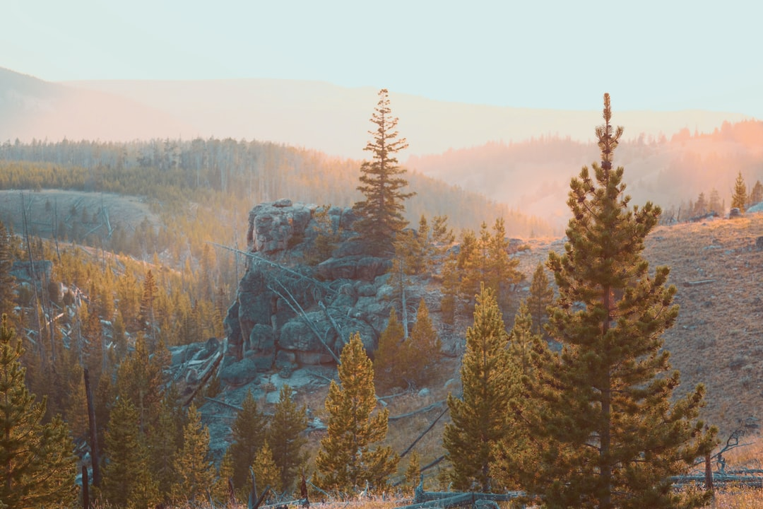 I took this photo hiking down from a ridge overlooking Bucking Mule Falls in Northern Wyoming. The mountain sunset was gorgeous the entire way down.