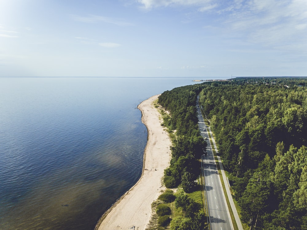 aerial photograph of road beside sea