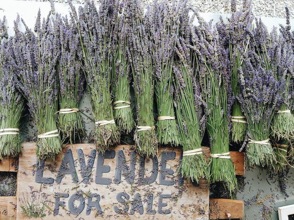 pile of ]lavenders