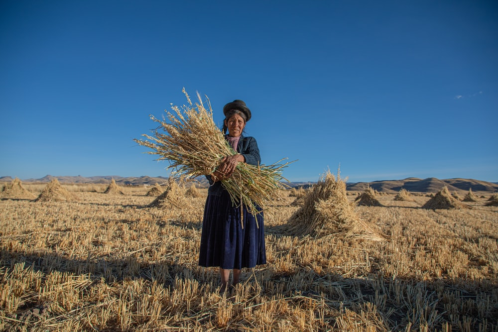 woman holding hay