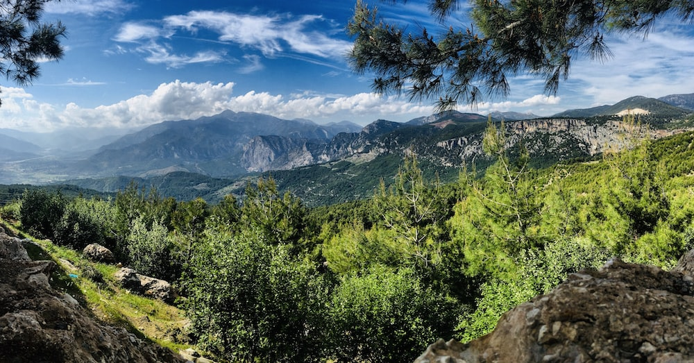 overlooking forest and mountains