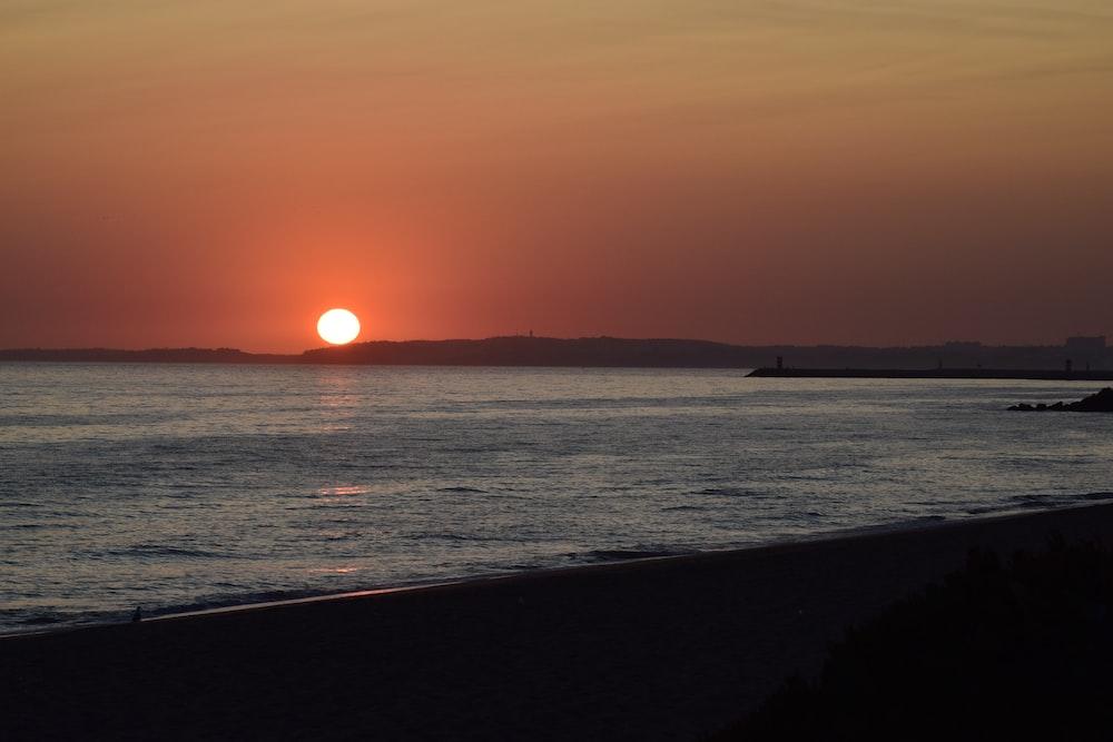 silhouette photography of seashore