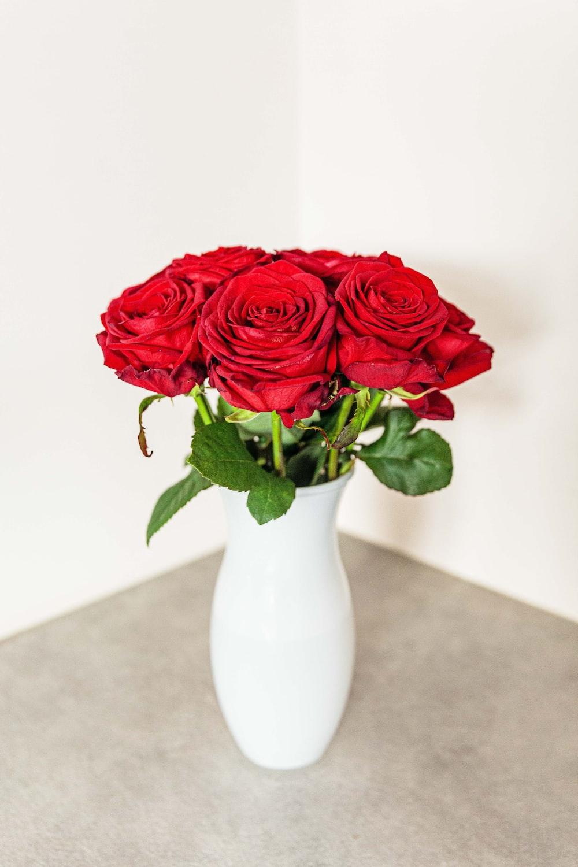red rose flowers in white vase