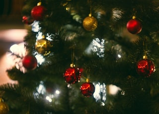 red and yellow christmas baubles close-up photography