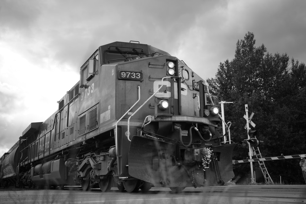 grayscale photo of train beside tree