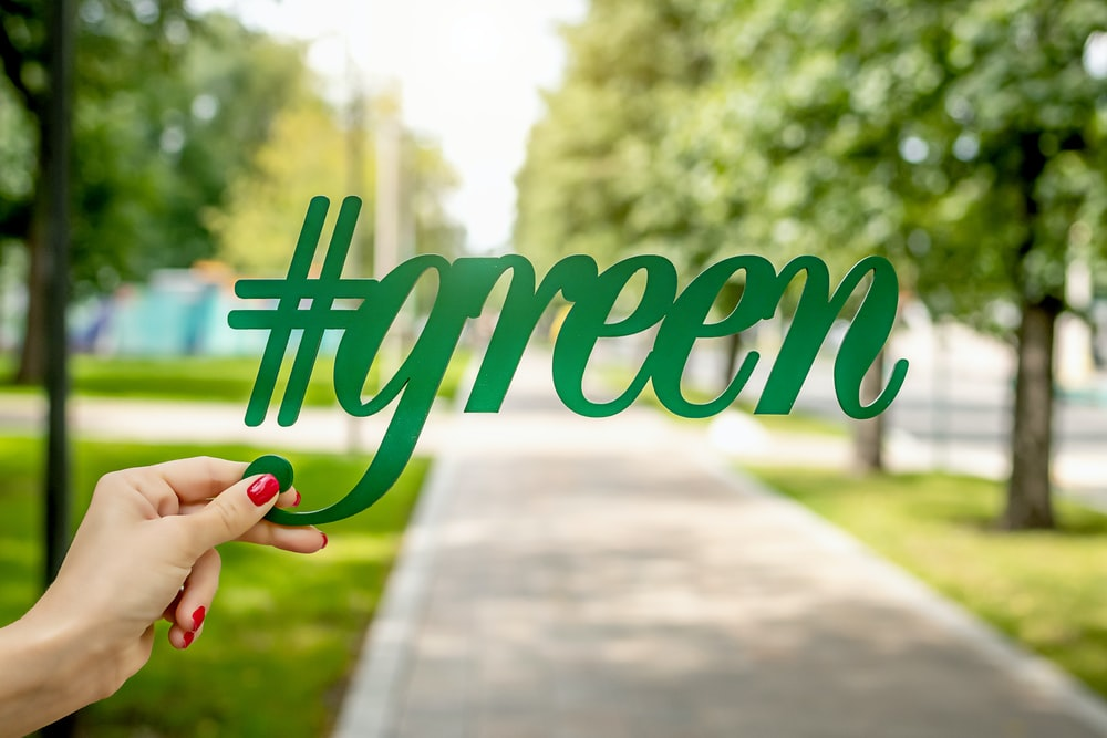 person holding green signage