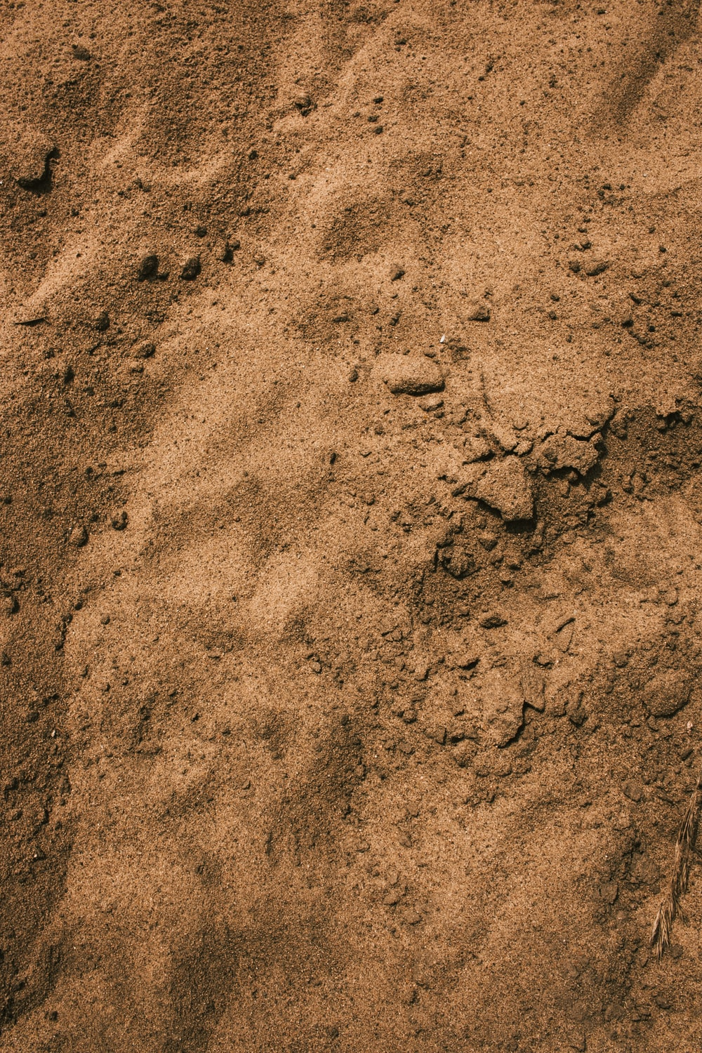 brown sand close-up photography