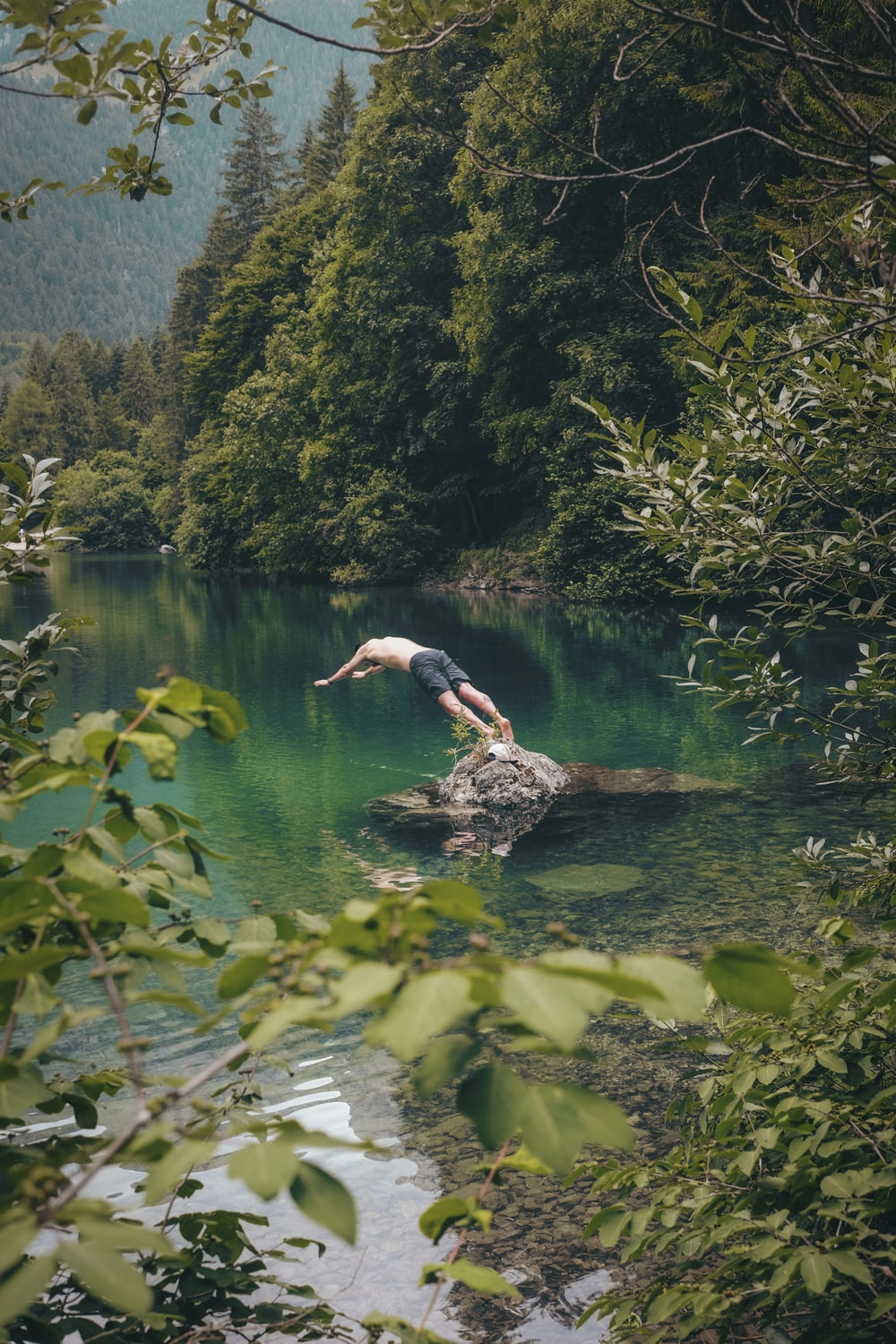 topless man wearing black shorts about to dive on water near trees