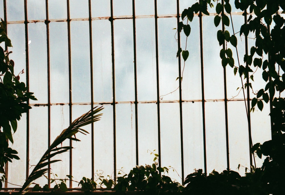 black metal framed window close-up photography