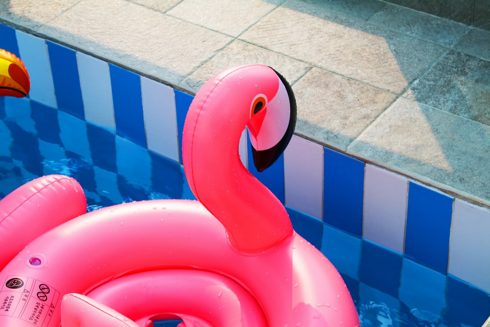 pink flamingo inflatable floater