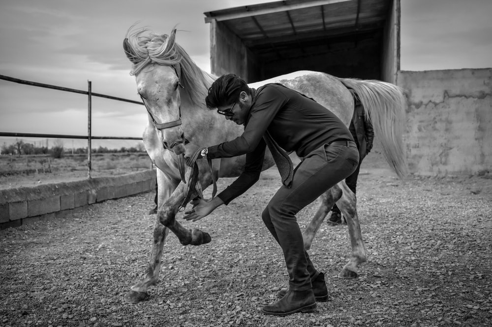 grayscale photography of man and horse