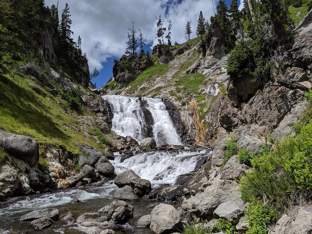 waterfall between pine trees at daytime