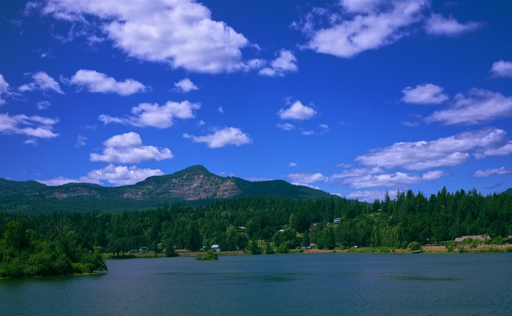 lake surrounded with tall and green trees under blue and white skies