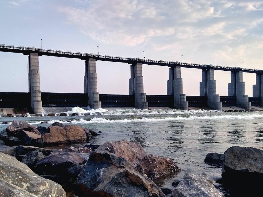 photography of bridge during daytime