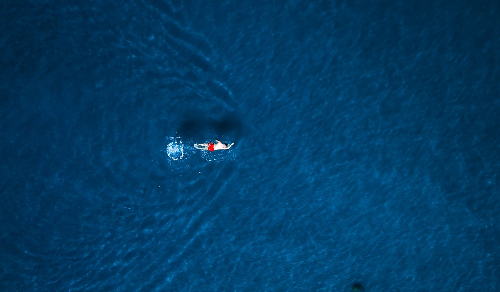 aerial photography body of water