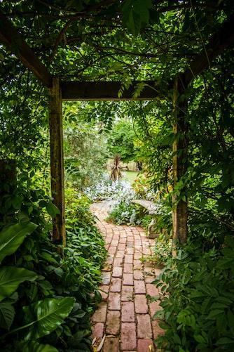Garden path in Lumbini Gardens