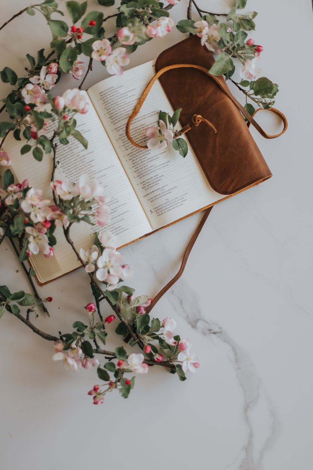 opened white book with pink and green floral ornament