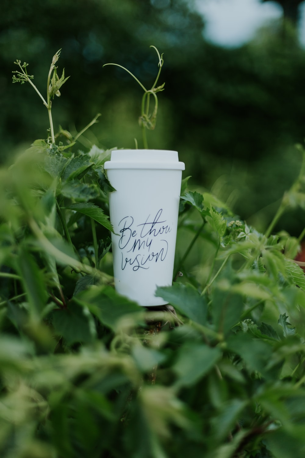 shallow focus photography of white plastic cup
