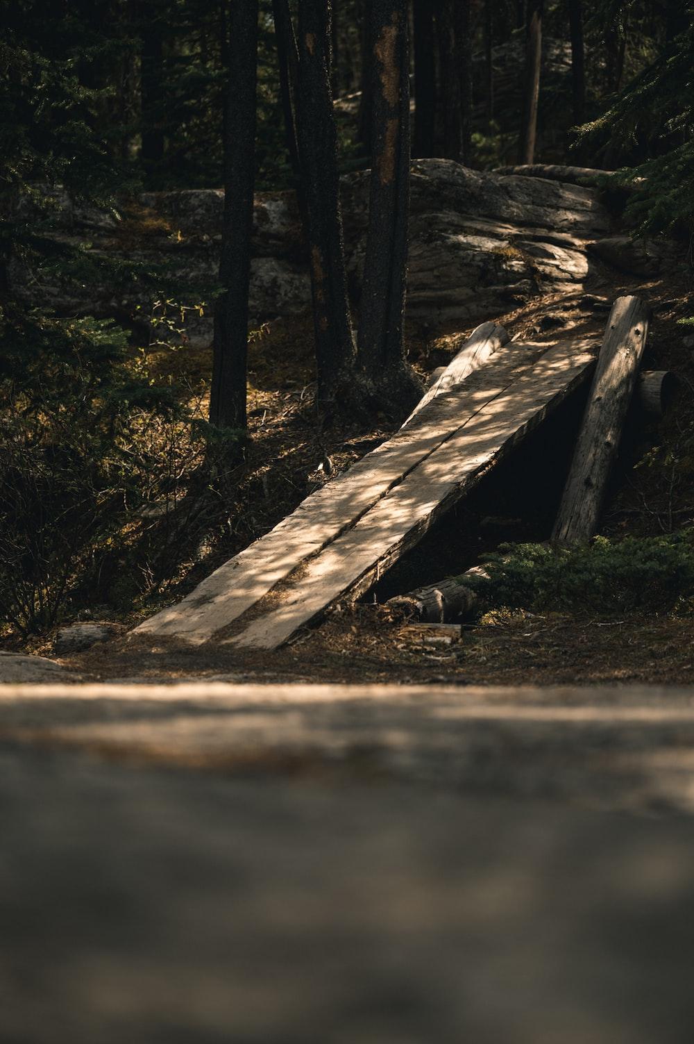 brown wooden slab