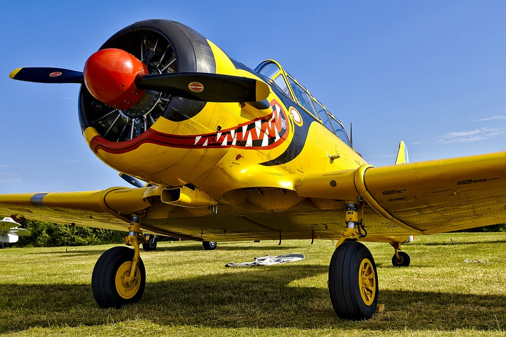 yellow and black biplane on green grass