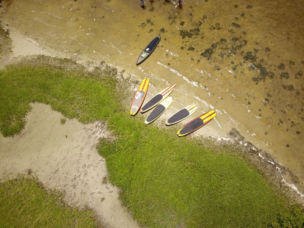 surfboards on shore