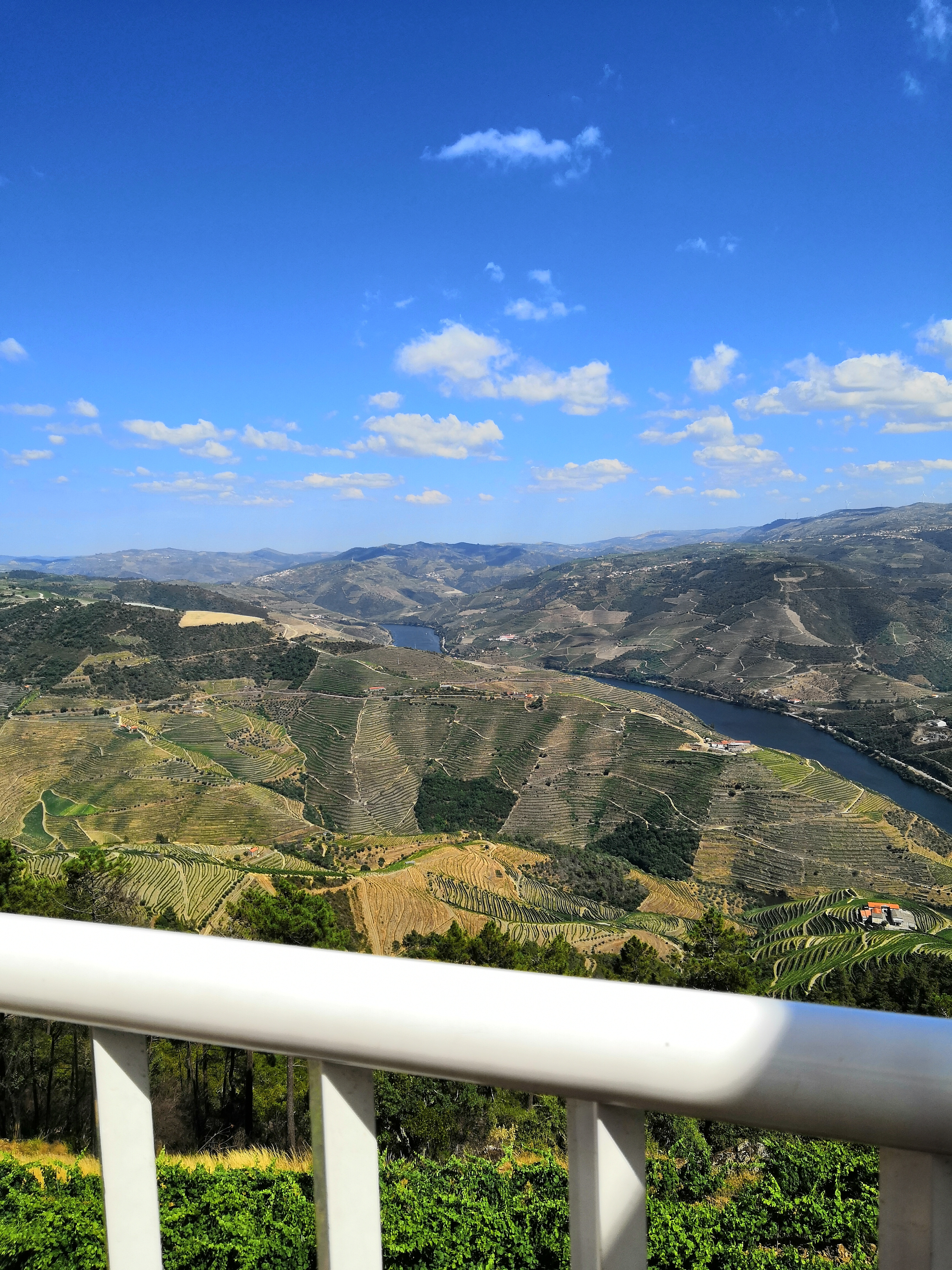 white railings overlooking the valley with river