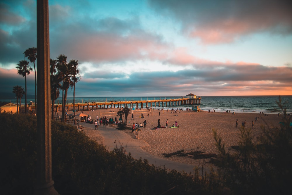 brown wooden boardwalk seashore scenery